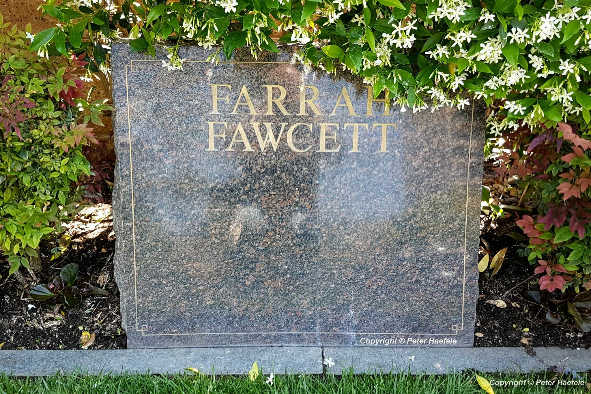 Roadtrip USA - Westwood Village Memorial Park Cemetery - Grave of Farrah Fawcett
