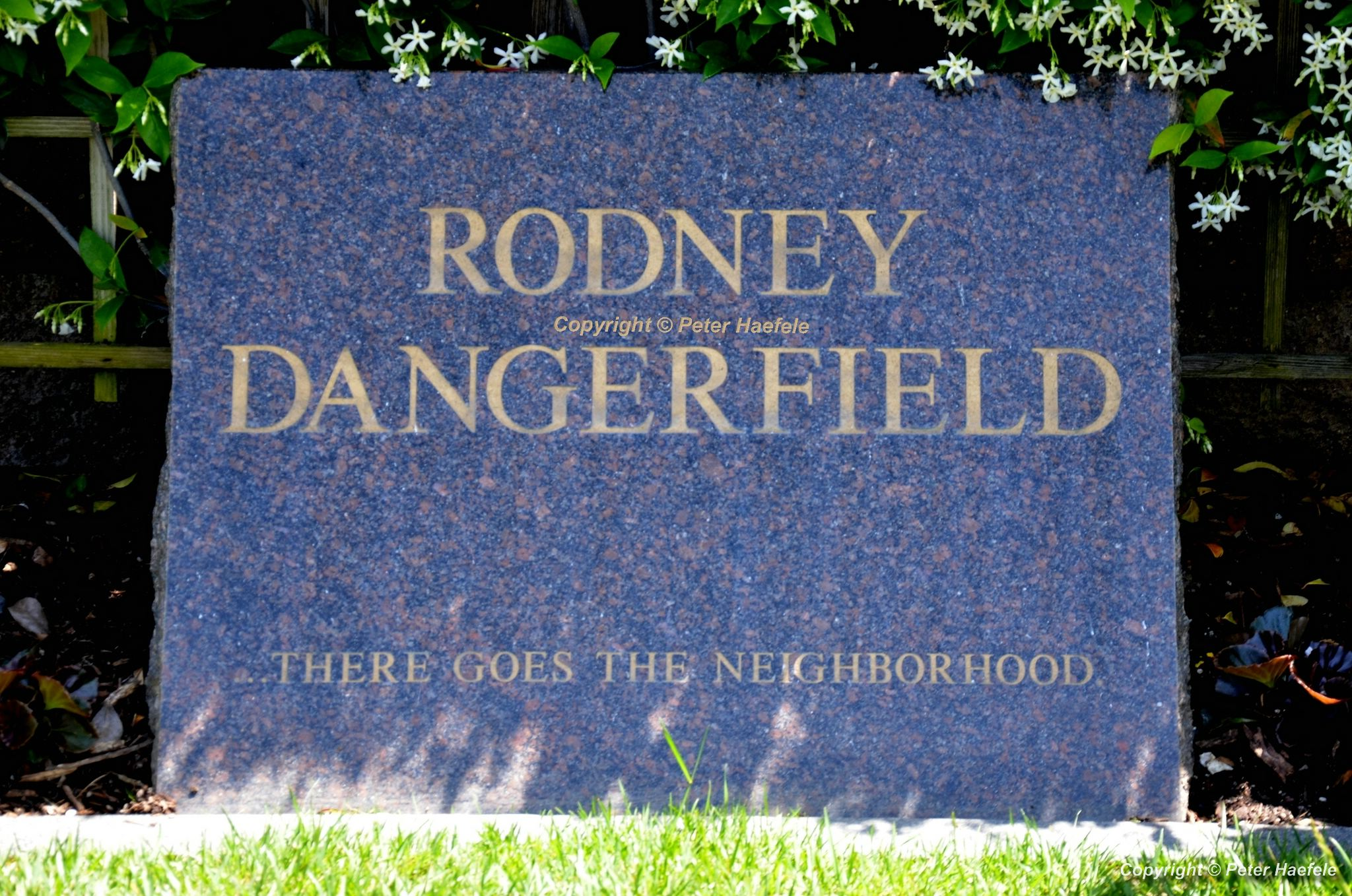 Roadtrip USA - Westwood Village Memorial Park Cemetery - Grave of Rodney Dangerfield